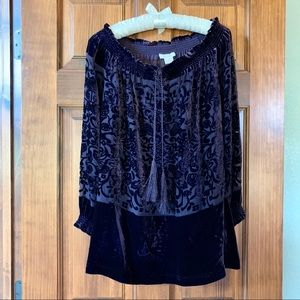 Sundance silk blend velvet blouse